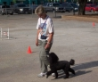 K-9 Kontrol - San Antonio Dog Training Mary Bengel